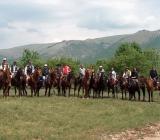 cavalli-norcia-maneggio